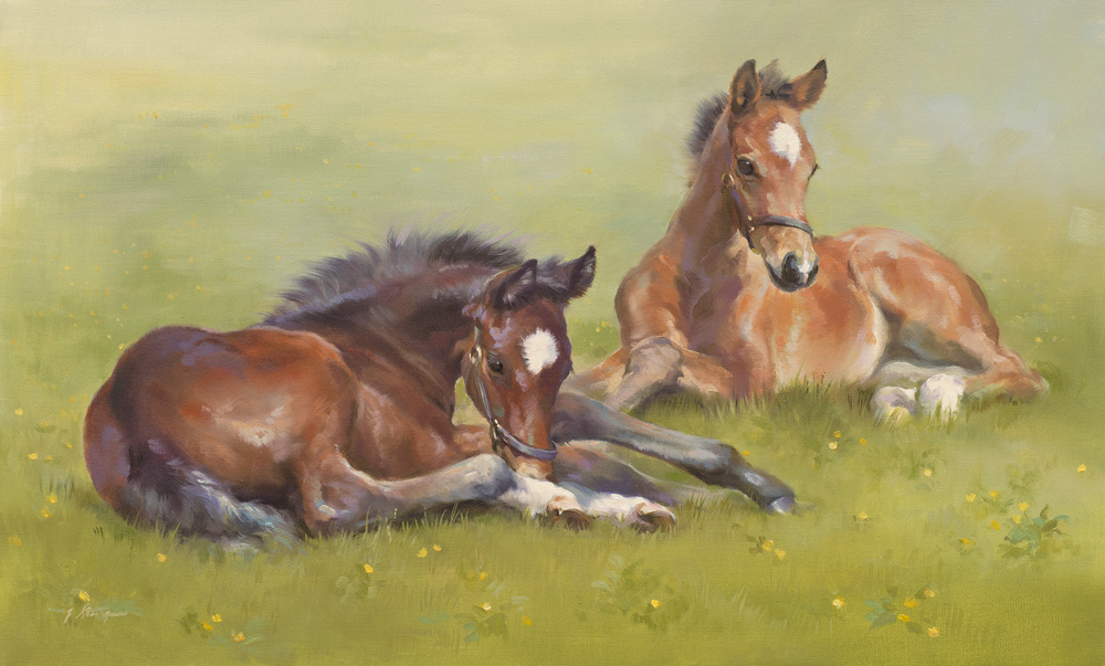 Summer Pastures (NEW)