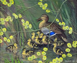 Peter Scott Paintings - Carnes Fine Art