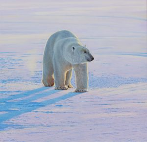 Polar Bear - Michael Demain Painting
