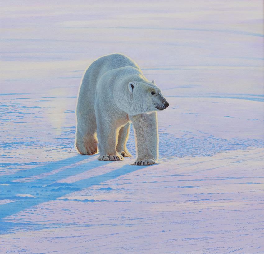 Arctic Light (NEW)