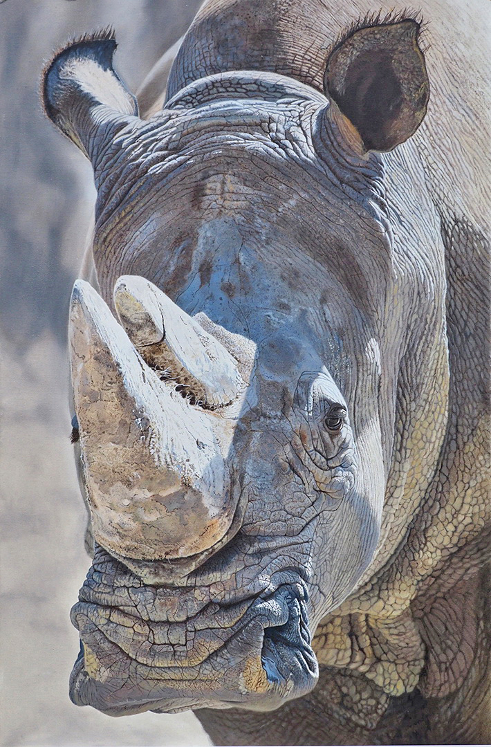 Rhino Oil Painting