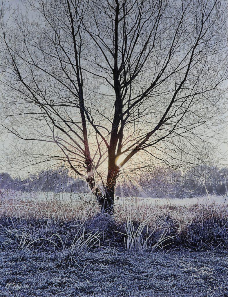 Dawn at Hinchingbrooke (NEW)