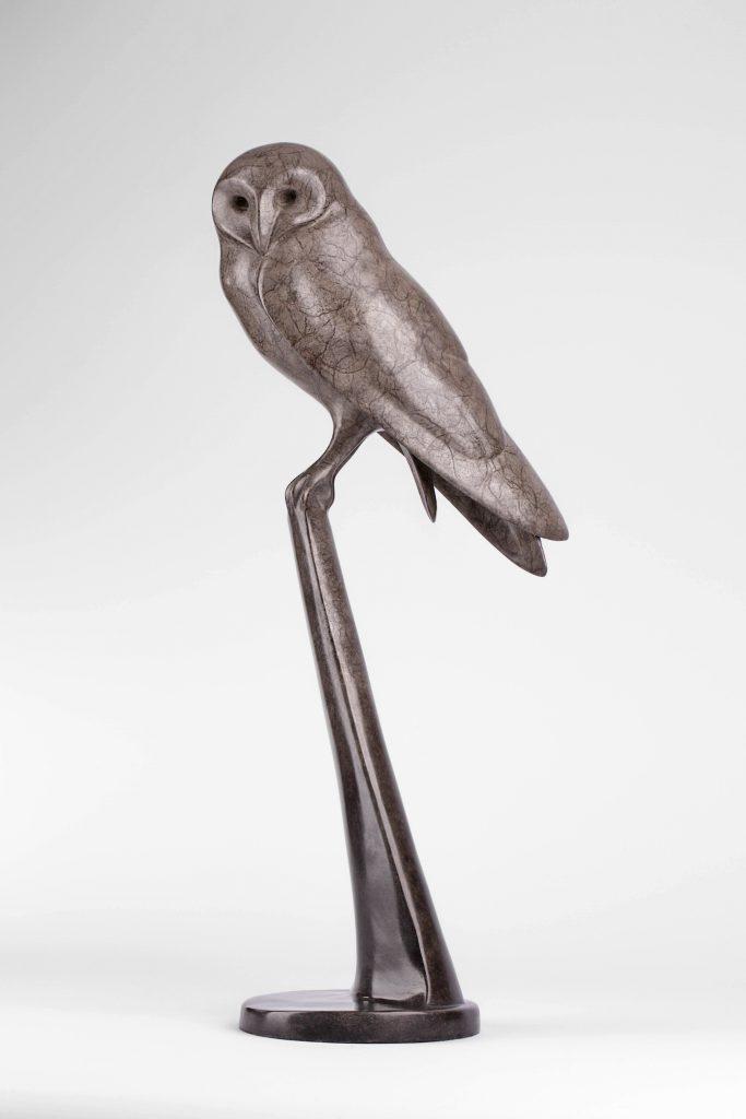 Barn Owl V (NEW)
