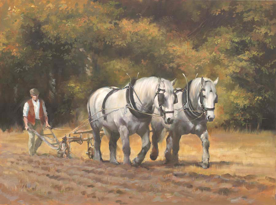 Percherons (NEW)