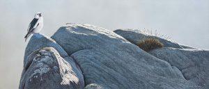 Michael Demain paintings